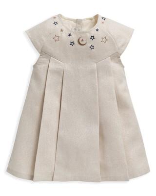Metallic Silver Dress